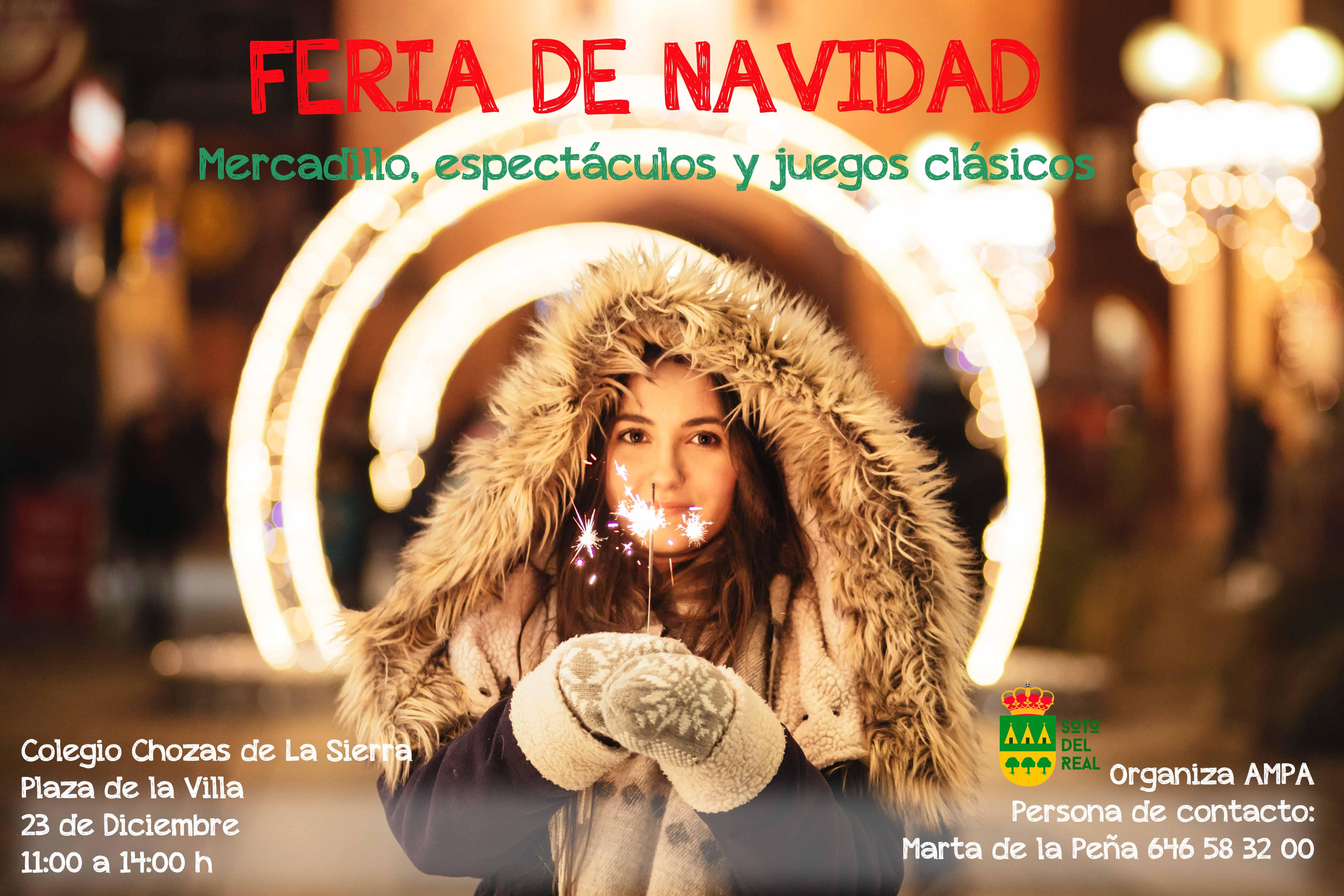 Cartel Pequeña Feria de Navidad